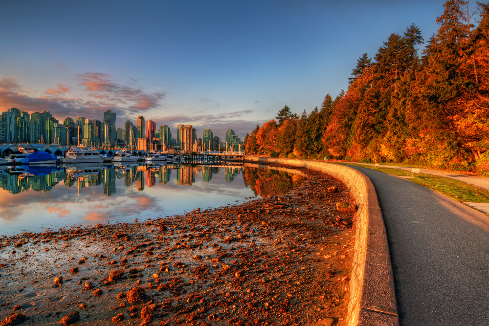 don't discount Vancouver - there's many parks to see the fall leaves!