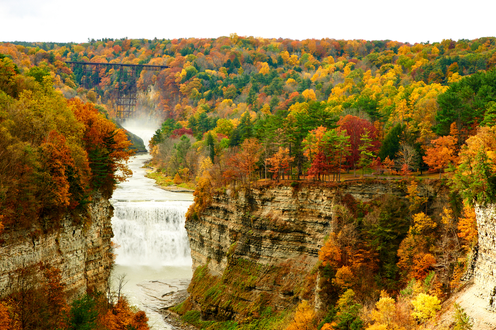 there are so many different colors to see in letchworth state park