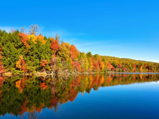 The Lake in Bays Mountain Lake Park