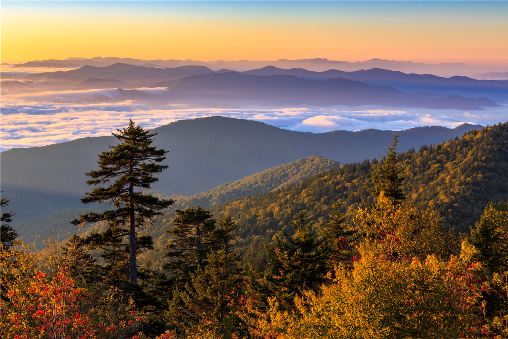 Viewpoint from Clingmans Dome