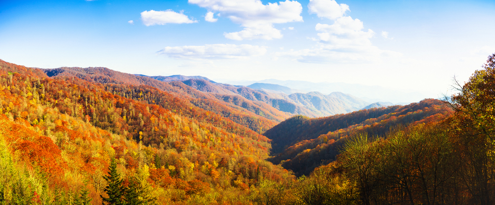 Fall in Tennessee with views of colorful foliage