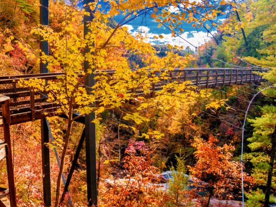 Tallulah Gorge State Parkis known for its running water carving through nature