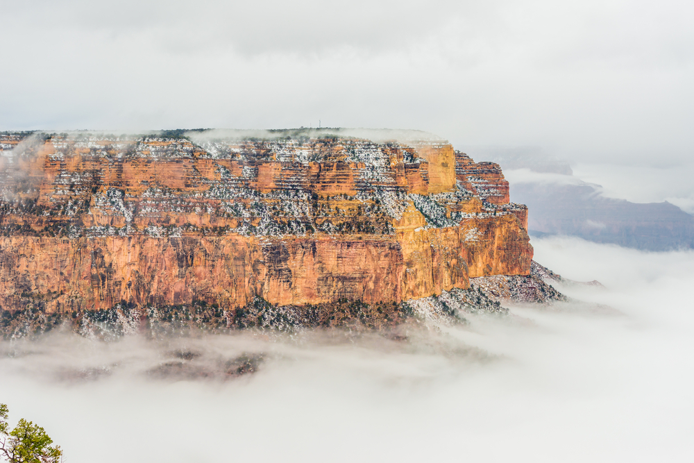 The Grand Canyon covered in fog