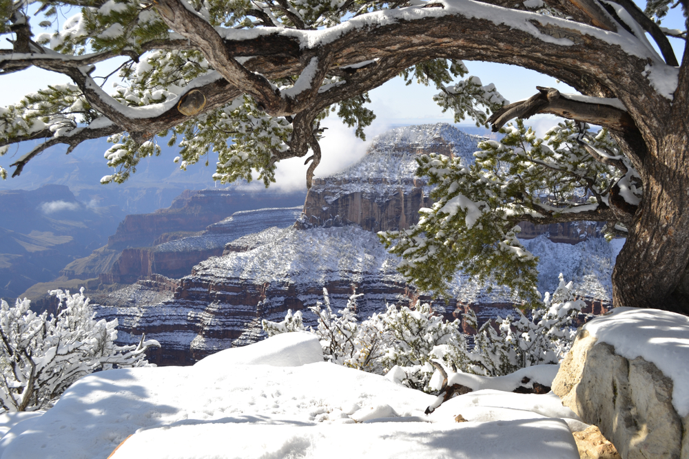 The north rim of the Grand Canyon in snow