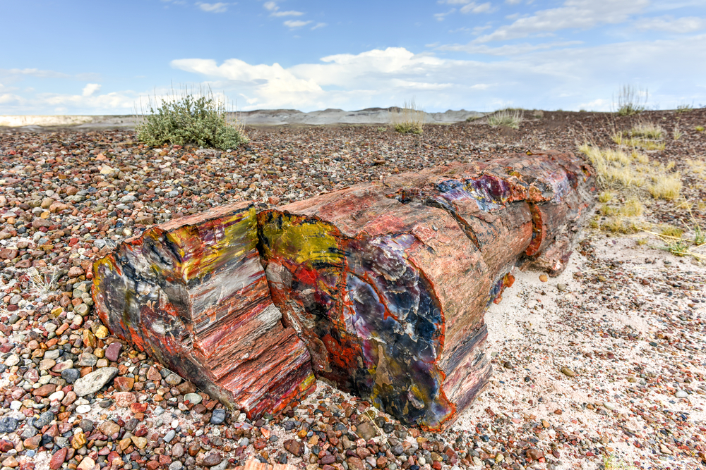 Named for its large deposits of petrified wood, this national park is located in northeastern Arizona