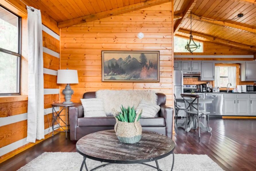 wooden interior of cabin with gray couch