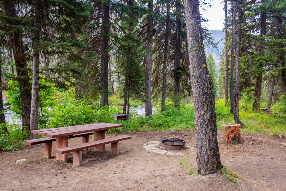 Idaho Road Trip Payette National Forest