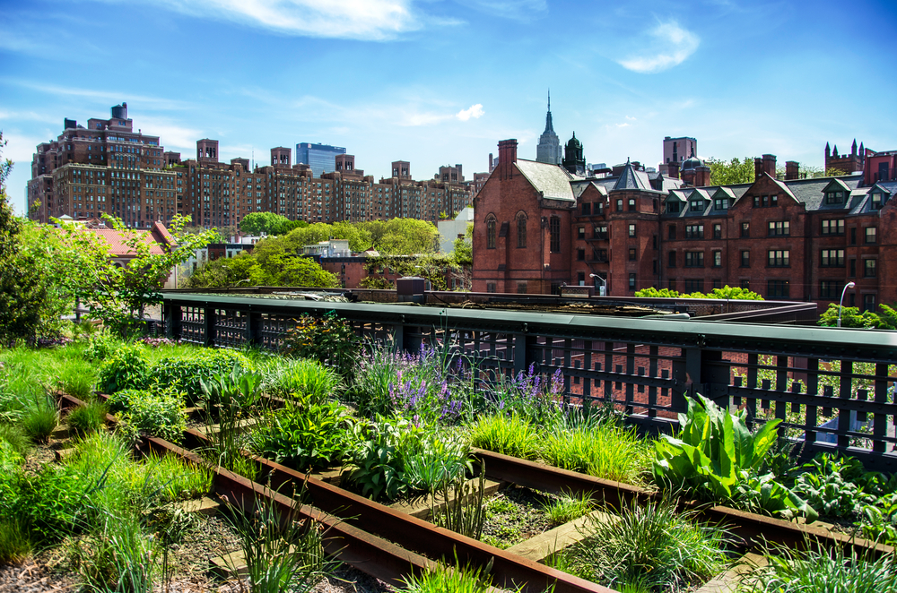 New York on a Budget High Line