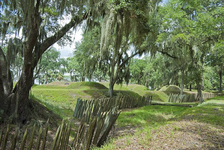 Nature trail in Savannah