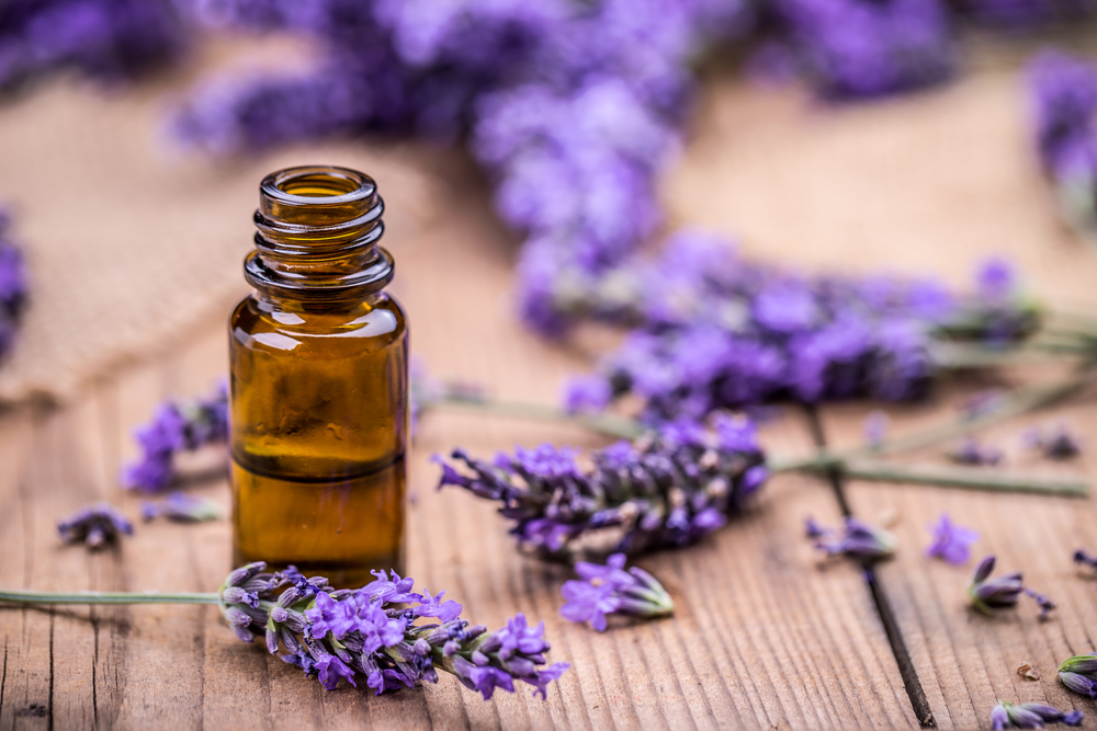 Lavender on a wooden table with essential oil