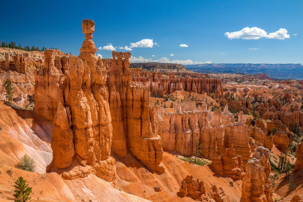photo of Navajo Loop Trail one of the things to do in Bryce Canyon