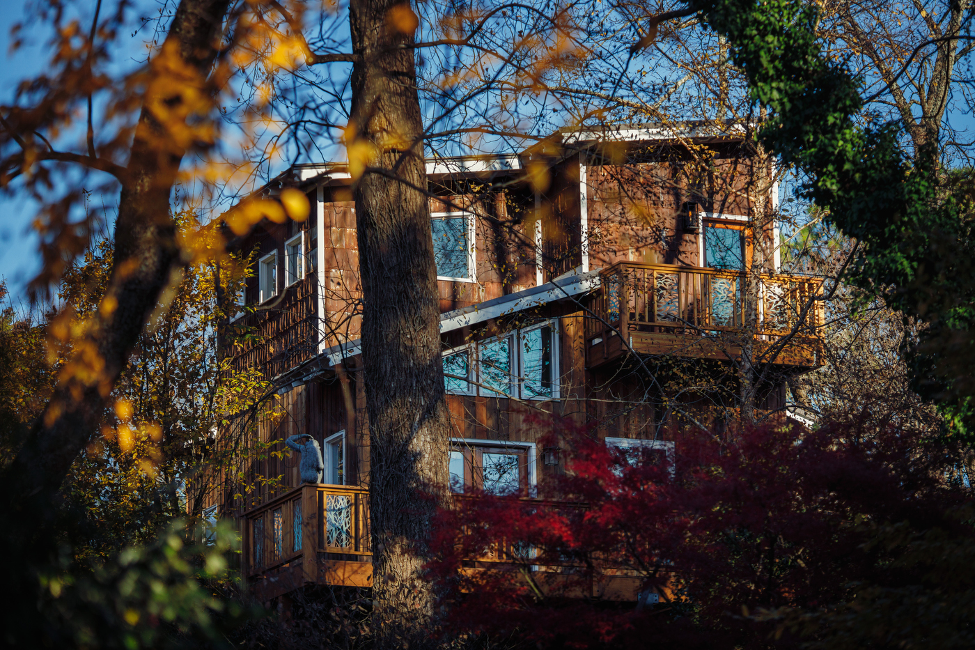 Photo of Archimedes' Nest treehouse one of the best airbnbs in georgia