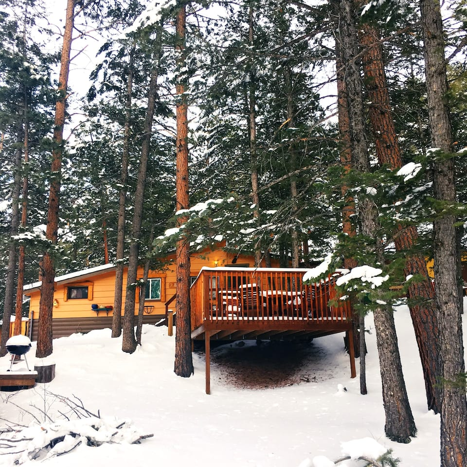 a photo of the birdhouse cabin one of the best airbnbs in rocky mountain national forest