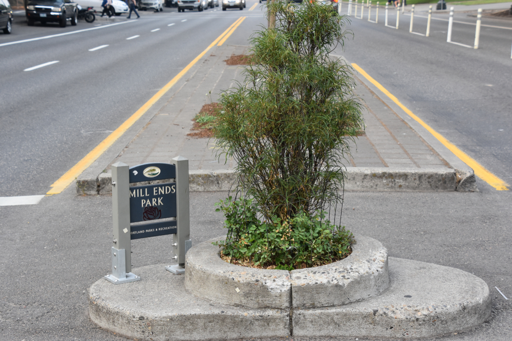 "A photo of the smallest park in the world. It has one small tree in it and is about two feet by two feet. It has a small sign that says ""Mill Ends Park"""