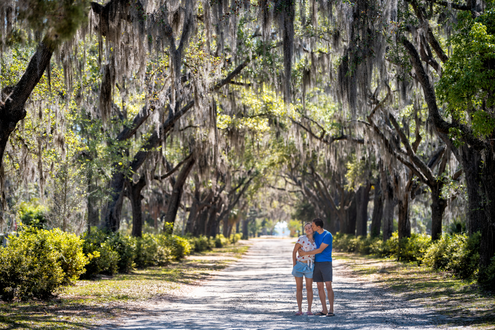 A couple standing in a lane of trees covered with Spanish moss draping down in Savannah Georgia one of the best honeymoons in the usa