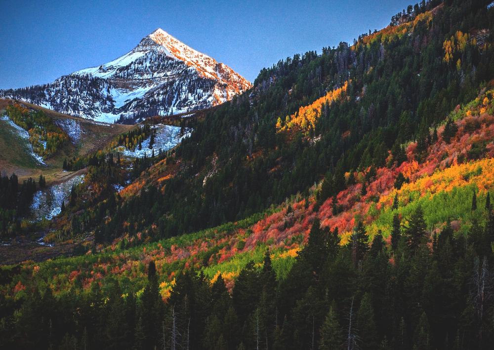 The Alpine Loop in Fall