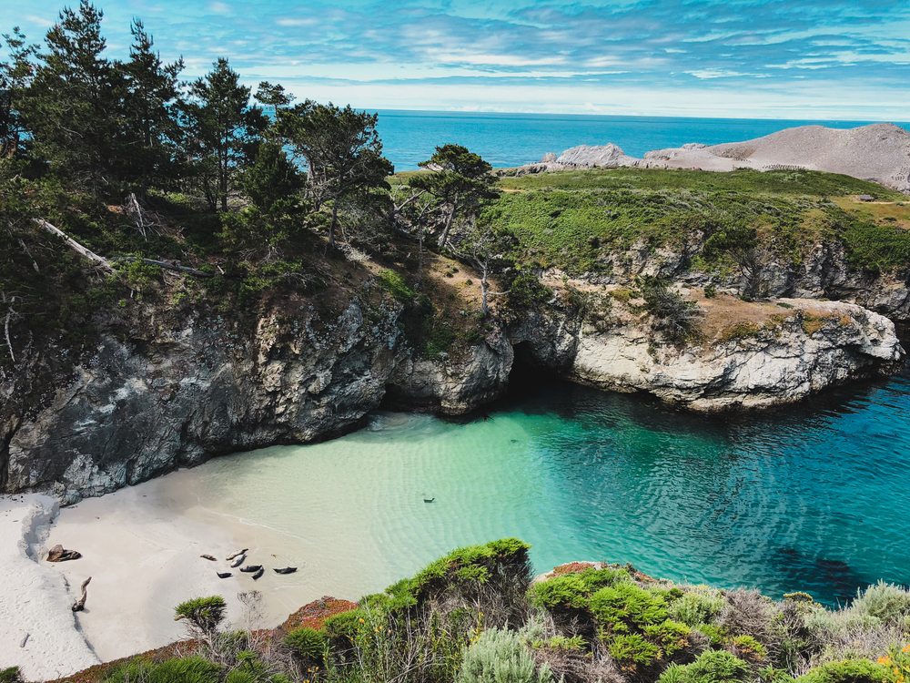 A secluded beach with crystal blue water on the Point Lobos Trail