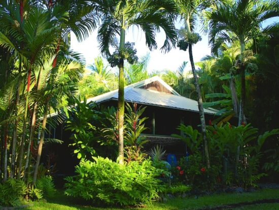 the Hana Ocean Palms Bungalow is one of the best Airbnbs in Maui