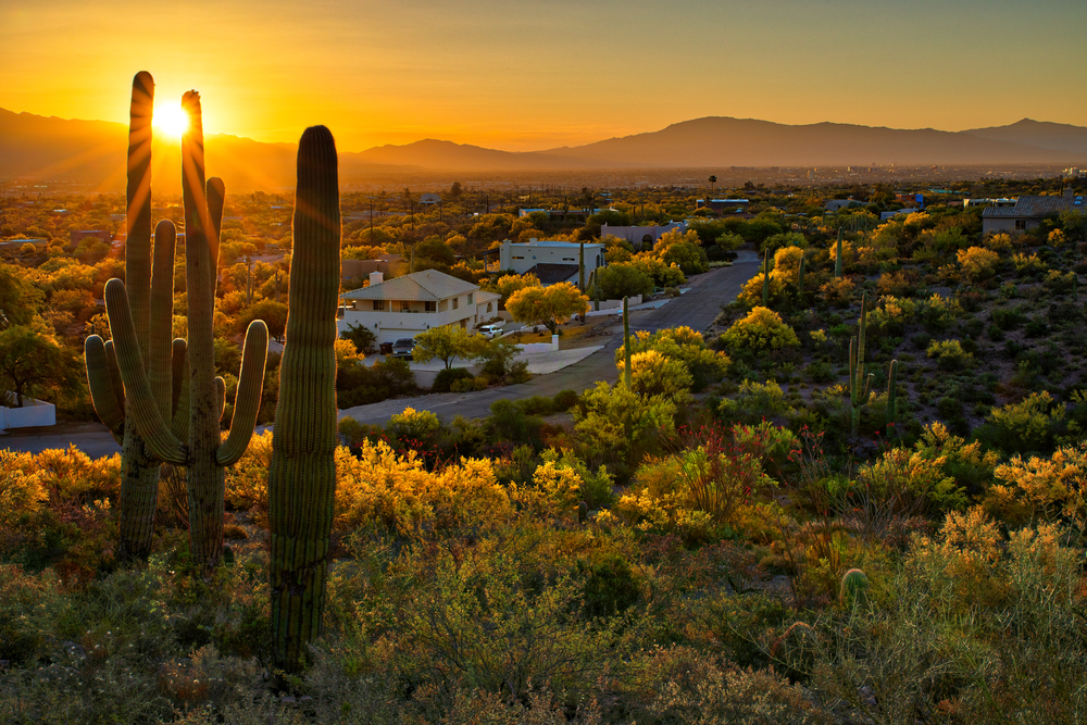 the views you can experience staying in the best Airbnbs in Tucson