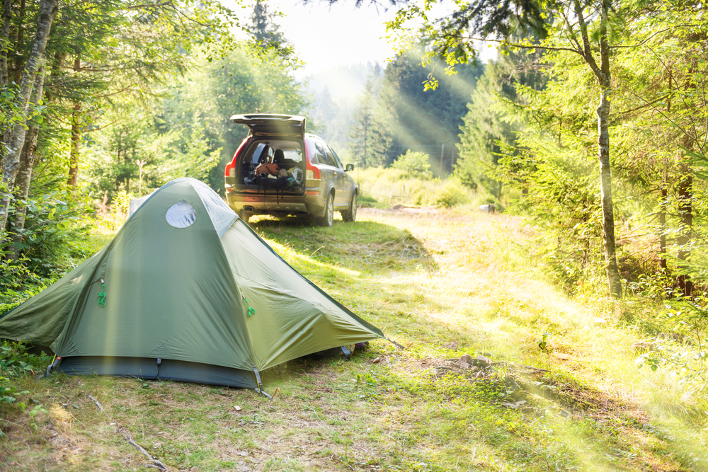 photo of a campsite in a field