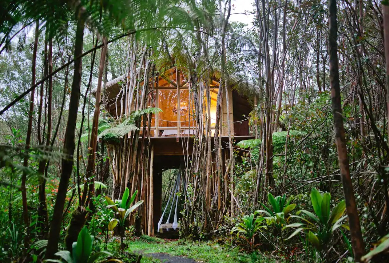 The exterior view of a treehouse in the jungle with large windows and a suspended bed on the ground floor best airbnbs in hawaii
