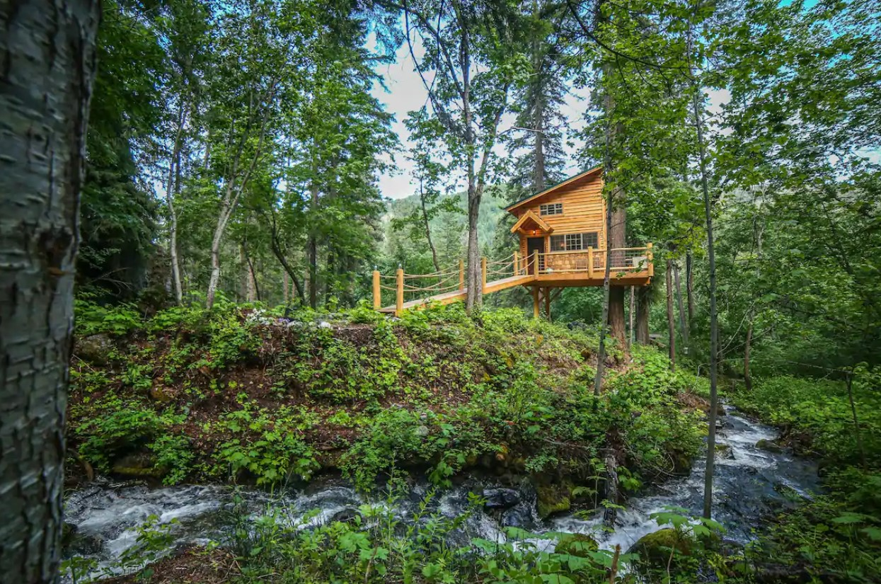 A large treehouse surrounded by tall green trees on the bank of a small creek in Washington