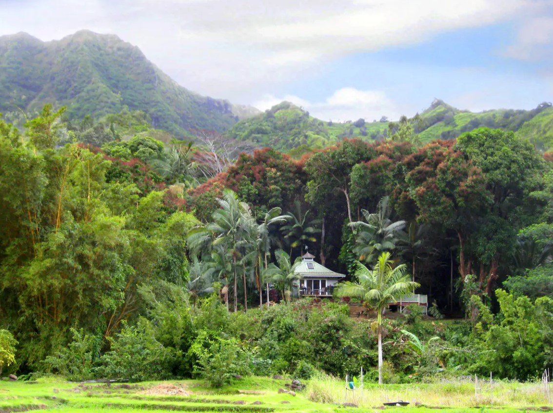 The view of a cottage surrounded by tropical jungle with a mountain in the distance one of the best airbnbs in Hawaii