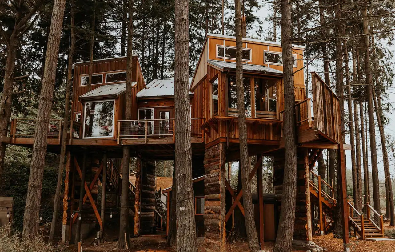 A large treehouse perched high in the trees in Port Angeles Washington one of the best Airbnbs in Washington