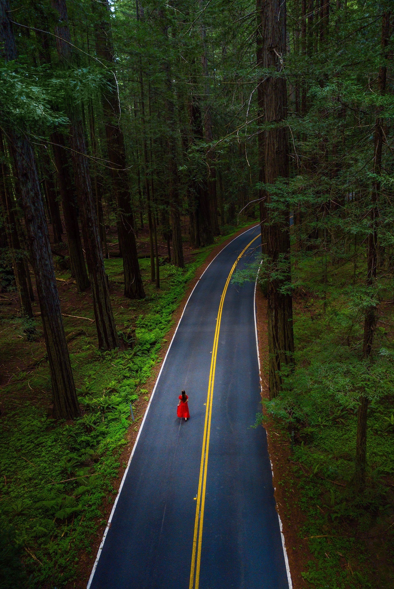 woman walking on road between trees