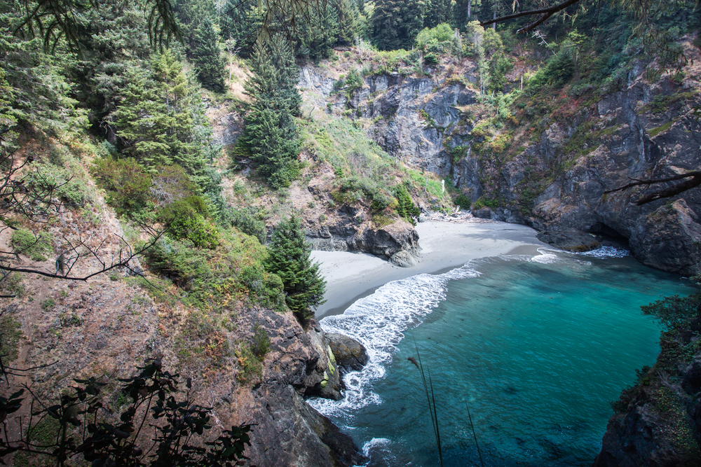 View of the super blue waters of Secret Beach, one of the best hikes in Oregon. The beach is tucked into a rocky cove and surrounded by evergreen trees. It has light colored sand and calm water.