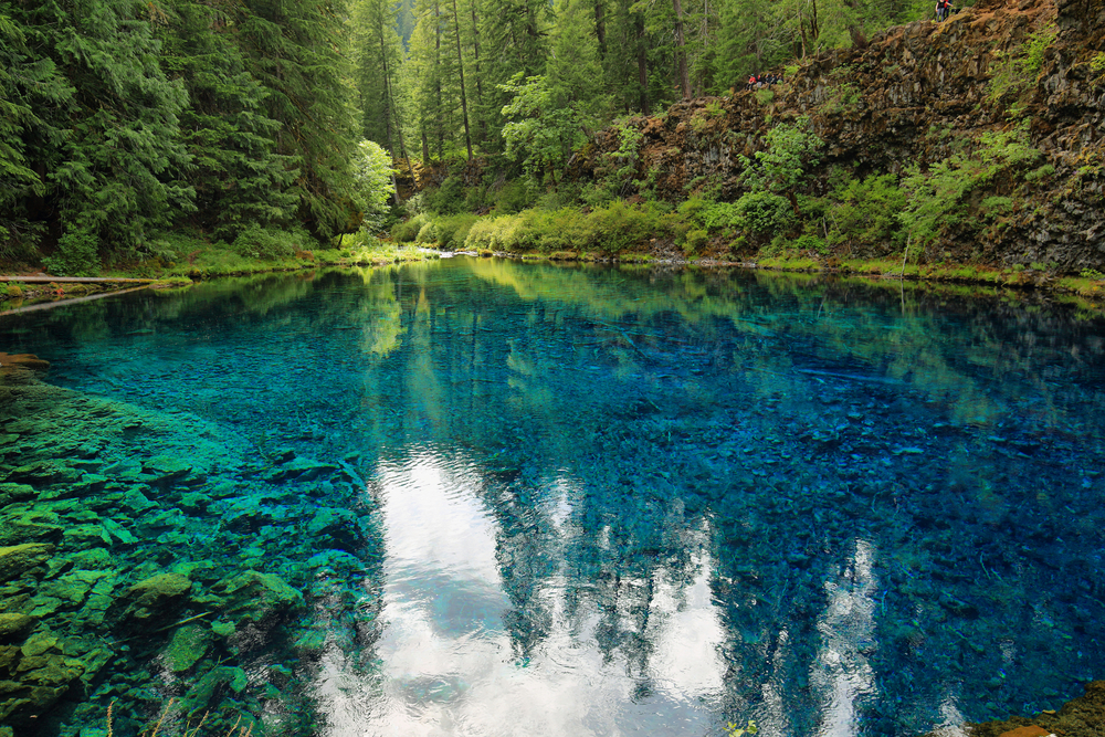 Photo of the unbelievably blue and clear water of the Tamolitch Blue Pool in Oregon. The pool is surrounded by lush green forest.