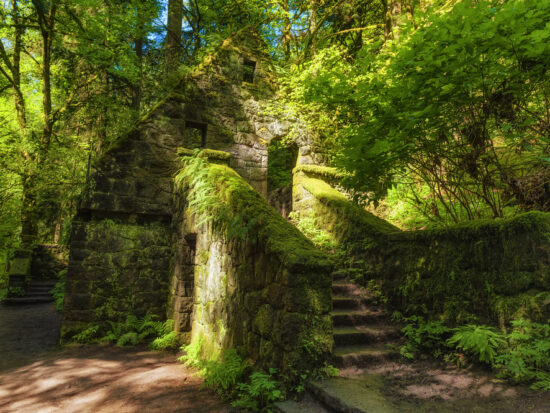 the witches castle in portland oregon covered by greenery