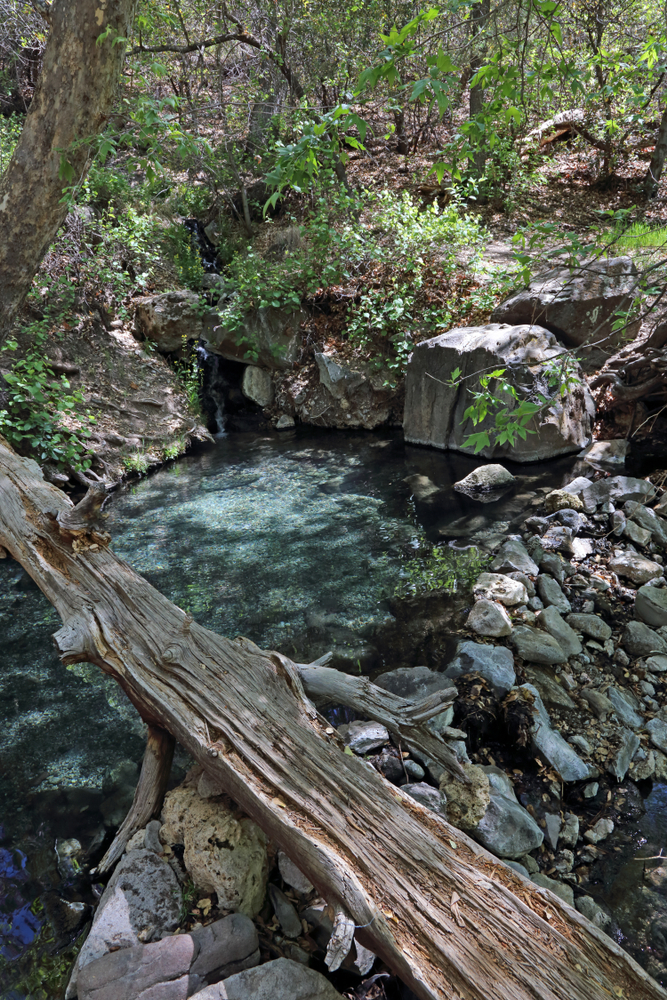 the clear waters of Jordan Hot Springs which is one of the best New Mexico hot springs