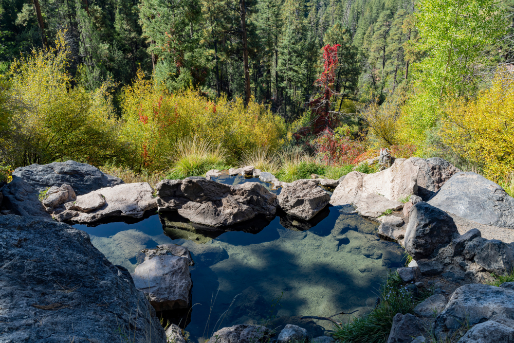 the view of the forest from Spence Hot Springs which is one of the best New Mexico hot springs