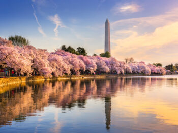 Washington DC during fall, one of the best weekend getaways on the east coast