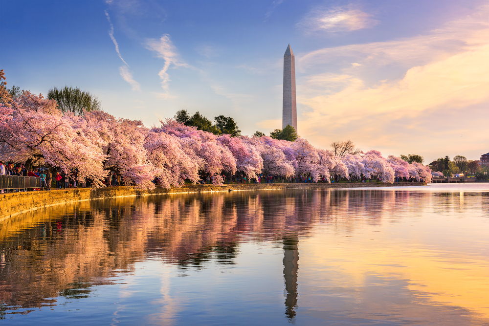 Washington D.C. should be visited at least once since it is a great weekend getaway on the East Coast.