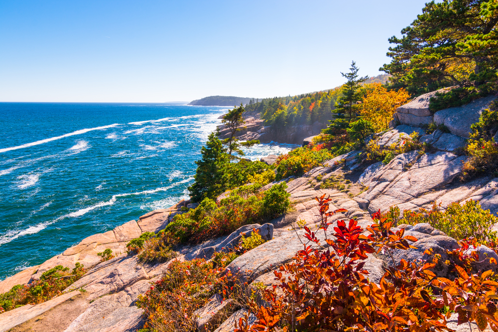 A rocky shore in coastal Maine at the Acadia National Park. There are trees, grasses, and views of the ocean.