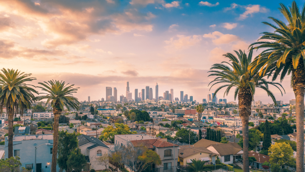 The view of the Los Angeles skyline on a partially cloudy day with palm trees in the foreground