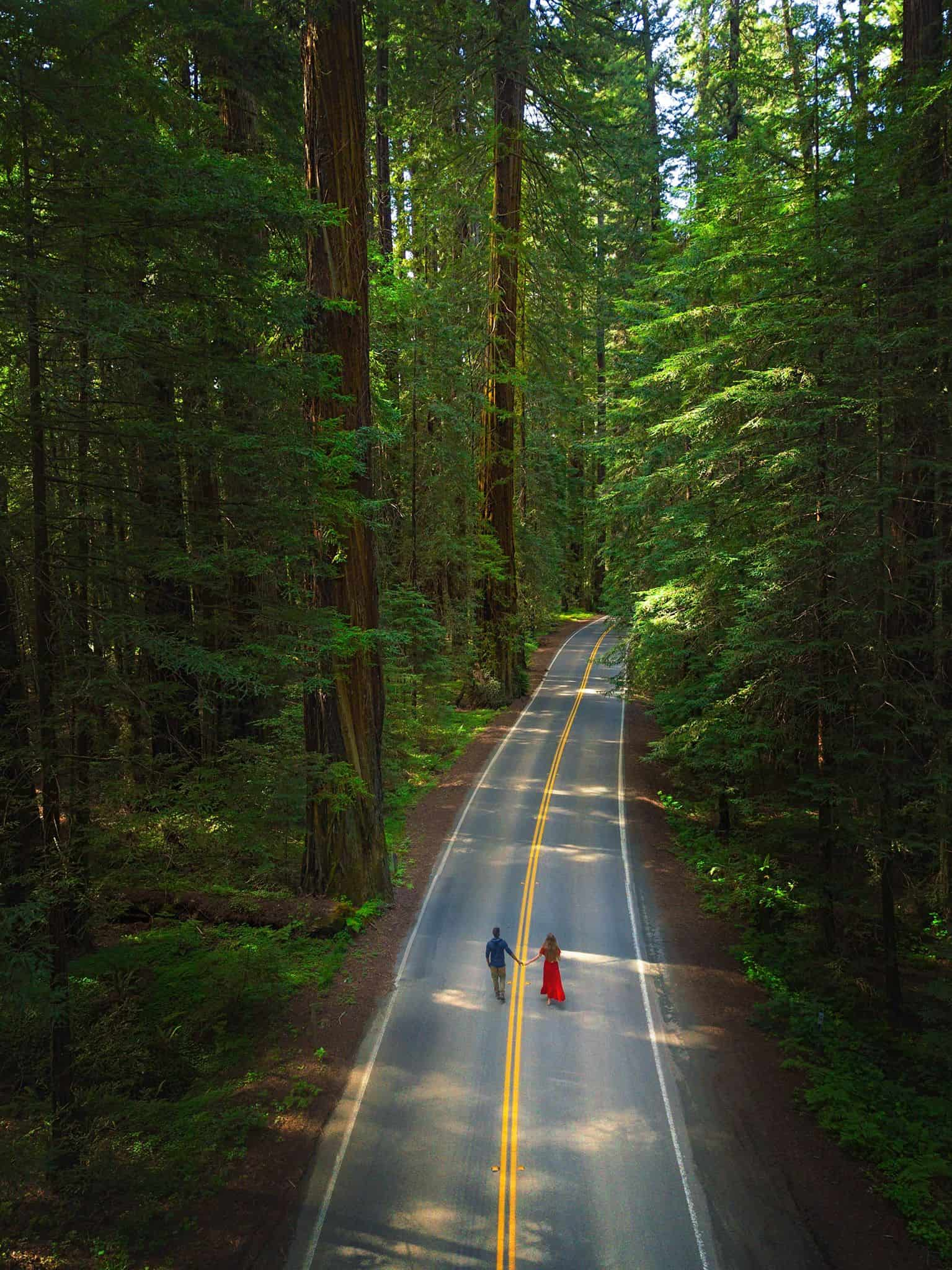 A couple standing in the middle of the road in the Avenue of Giants area of Northern California. The woman is wearing a long red dress and the man is wearing a blue shirt and khaki pants. The road goes out of frame and is surrounded by massive trees on both sides. The view is an aerial view.