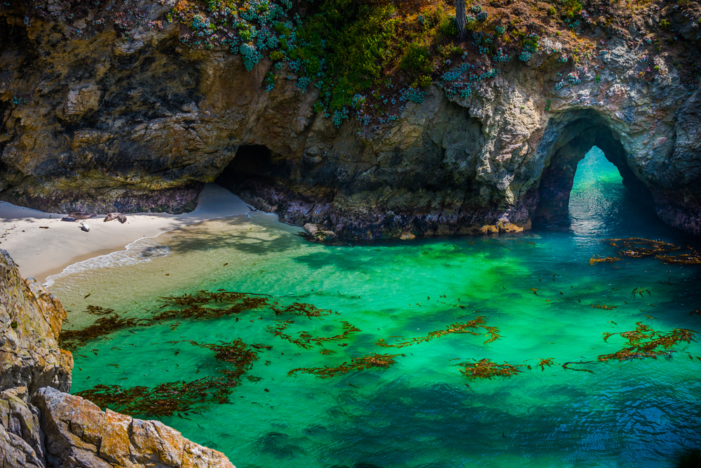 One of the coves in the Point Lobos State Natural Reserve. The cove has pale tan sand, bright blue green water with kelp floating in it, and it is surrounded by large rock formations. One of them has a large keyhole in it that you can see water through.