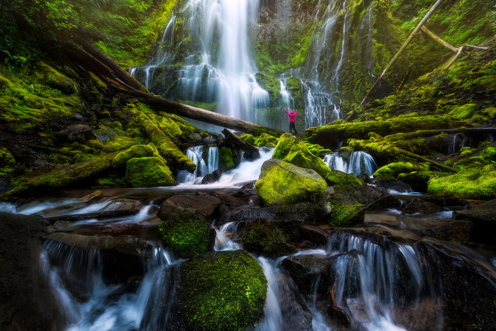 A person in hiking gear with a bright pink jacket standing in front of the massive Proxy Falls in Oregon. The waterfall is surrounded by rocks and downed trees covered in moss.