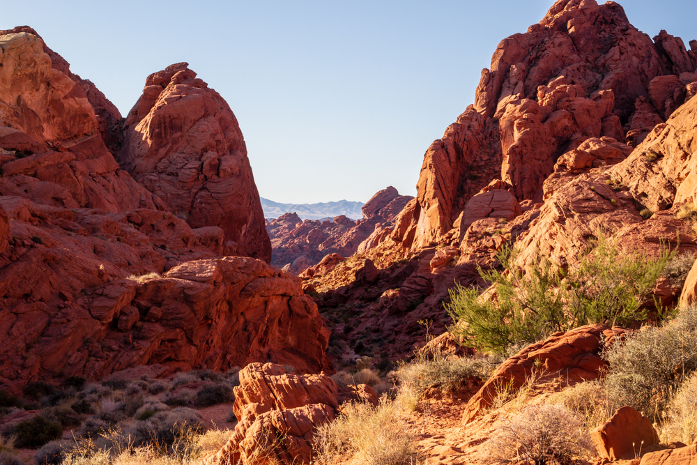 a zoomed out view of Petroglyph Canyon on the way to Mouse's Tank
