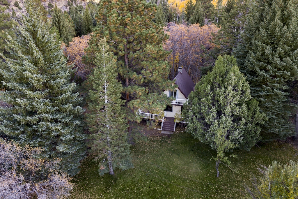 Aerial photo of a white A frame cottage surrounded by huge pine trees. This is one of the best vacation rentals in Utah.