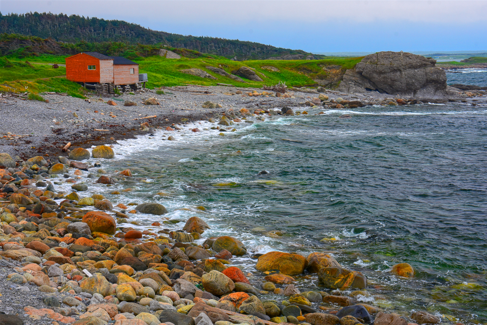 The shore of Broom Point in Gros Morne National Park. There is a small red cabin with faded paint on the front of it on the shore. The shore is covered in rocks and you can see grass growing in a hilly field behind the shore.