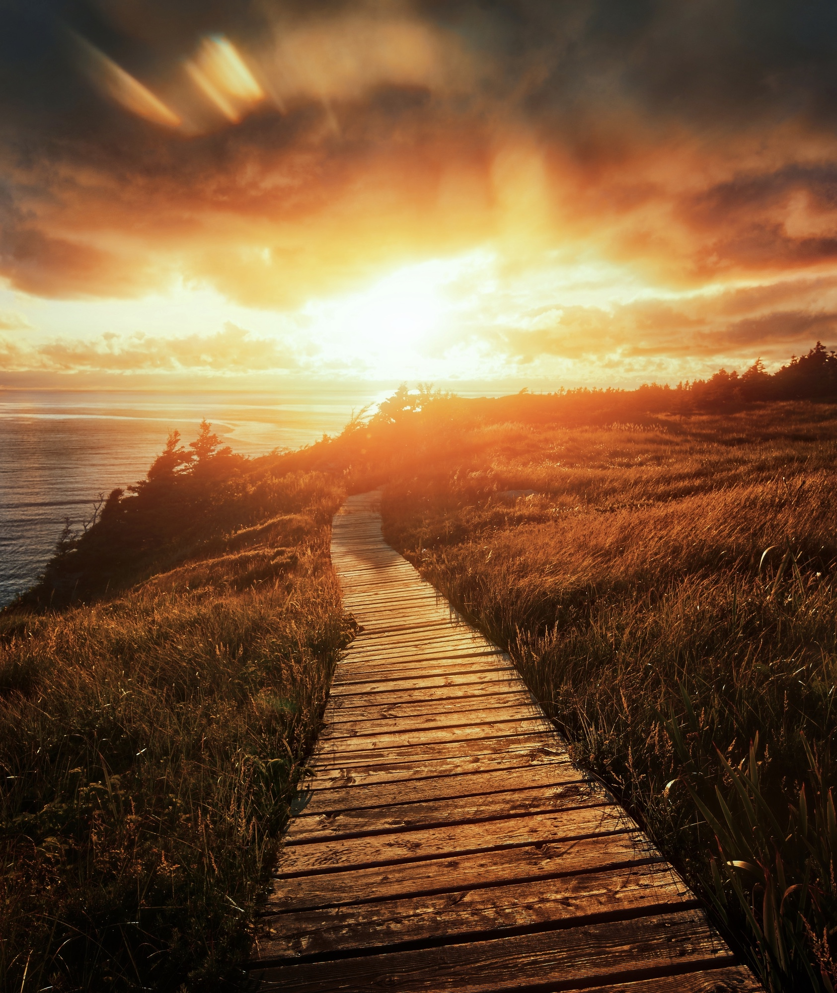 A boardwalk through a grassy area on the shore of a river. The sun is setting directly ahead and the sky is a bright orange and yellow.